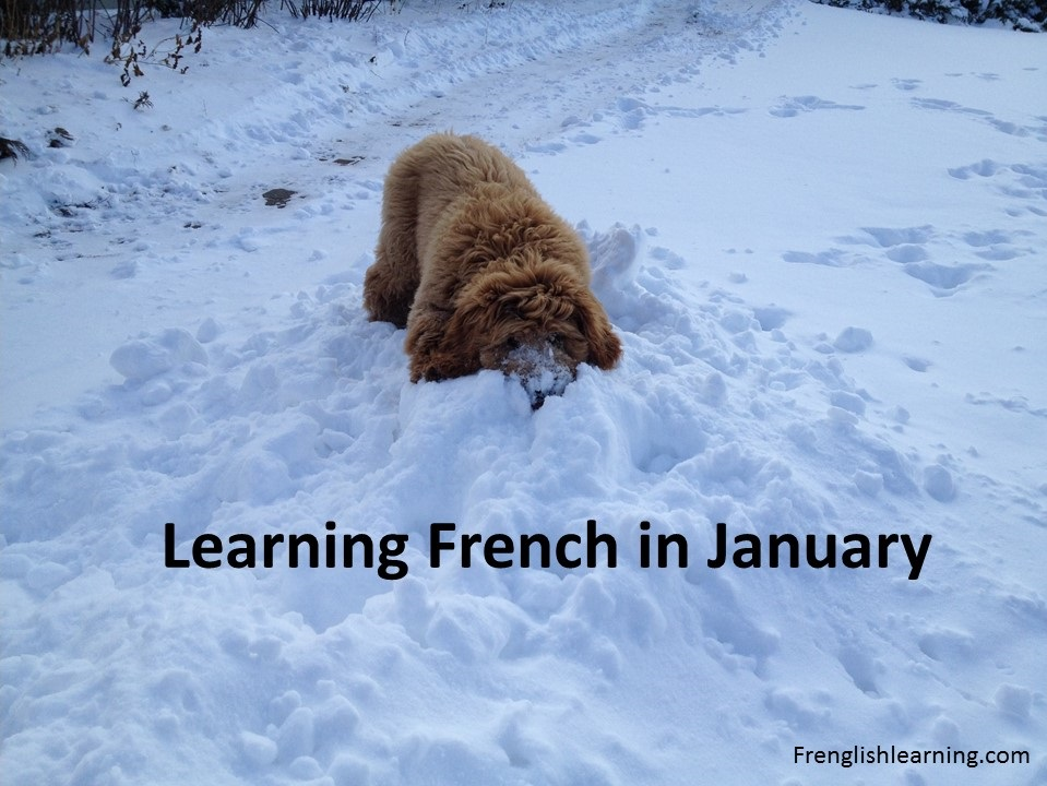 learning French january
